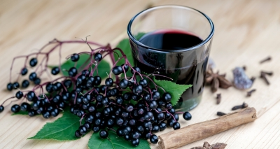 ElderCraft® Elderberry Extract