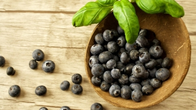 Maqui Berry Extract